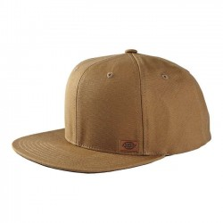 DICKIES BROWN HAT MINNESOTA